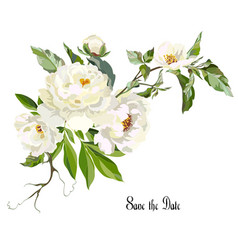 Card with white peonies vector