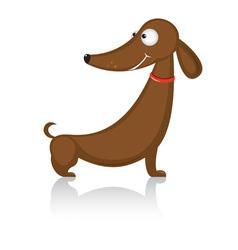 cartoon dachshund dog vector image