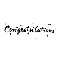 congratulations calligraphy hand written text vector image
