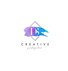Ds artistic watercolor letter brush logo vector