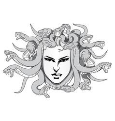 medusa vector image