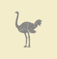 ostrich icon vector image