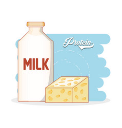 protein bottle milk and cheese diet healthy food vector image