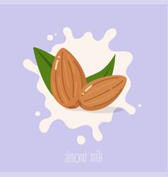 Almond milk almond nuts on a milk splash vector