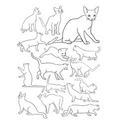 Cats line drawing vector