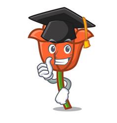 Graduation poppy flower character cartoon vector