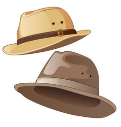 male hats in gray and brown color vector image
