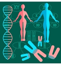 Set genetics people vector image