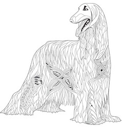 zentangle stylized afghan hound hand drawn lace vector image vector image