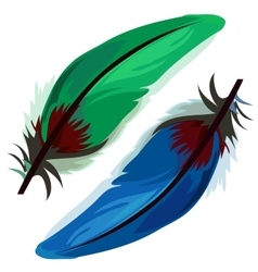 Blue and green bird feather on white background vector image vector image