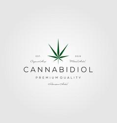 cannabis vintage logo marijuana icon design vector image