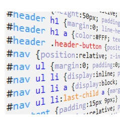 Css code vector image