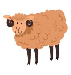 Cute sheep or lamb neat domestic animal vector