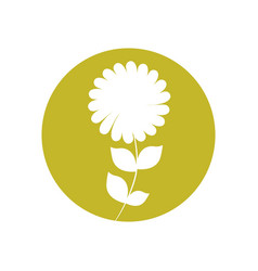 Peony flower natural icon vector