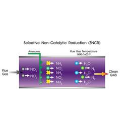 Selective non catalytic reduction vector