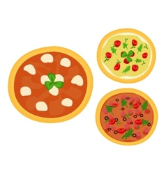 Three Italian pizzas vector