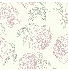 Hand drawing tenderness peony flowers beautiful vector image vector image