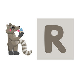 r is for raccoon letter r raccoon cute vector image