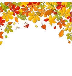 autumn falling leaf isolated on white background vector image