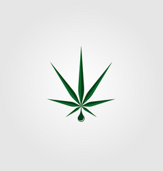 cannabis oil marijuana logo icon design vector image