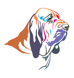 Colorful decorative portrait of bloodhound vector