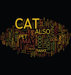 long term cat care text background word cloud vector image