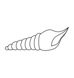isolated beach seashell vector image