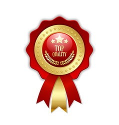 Top quality rosette vector image vector image