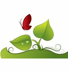 Butterfly illustration vector