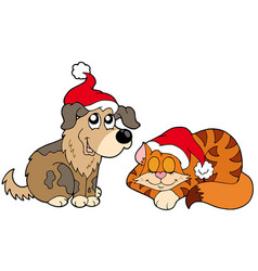 christmas cat and dog vector image