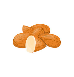closeup almond icon healthy eating cartoon group vector image