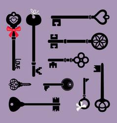 decorative key icons vector image