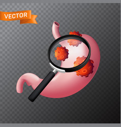 human stomach under a magnifying glass with viral vector image