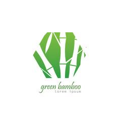 polygon bamboo logo vector image