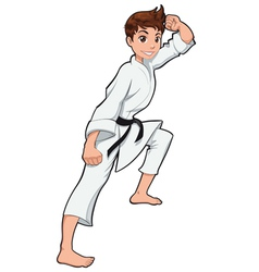 Young boy Karate Player vector image