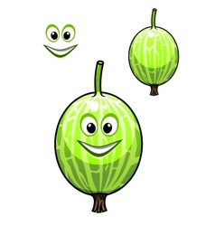 Happy smiling fresh Chinese gooseberry vector image vector image