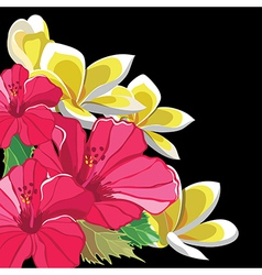 Beautiful floral pattern with hibiscus vector