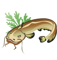 Catfish with salad food isolated vector
