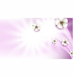 cotton flowers natural buds copy space vector image