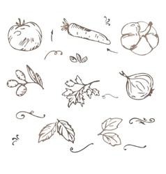Doodle Vegetables sketch vector image