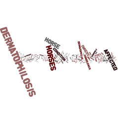 Equine dermatophilosis text background word cloud vector