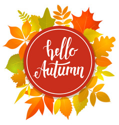 Hello autumn round frame vector