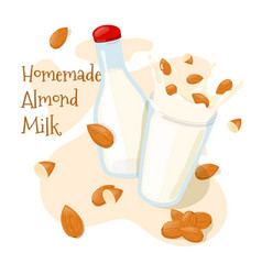 homemade almond milk in a bottle and splash with vector image