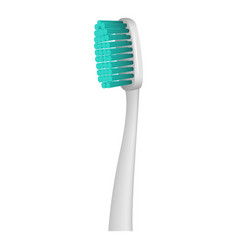 protecting toothbrush icon realistic style vector image