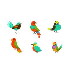 tropical birds collection bright exotic birds vector image