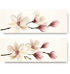 Two magnolia banners vector