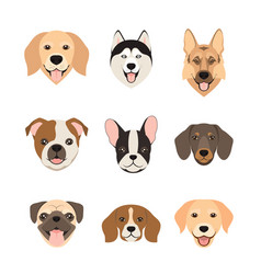 flat style dog head icons cartoon dogs faces set vector image vector image