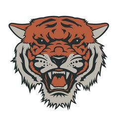 tiger 007 vector image vector image