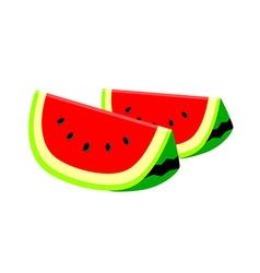 icon water melon vector image