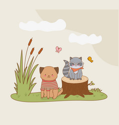 cute raccoon and dog in field woodland vector image